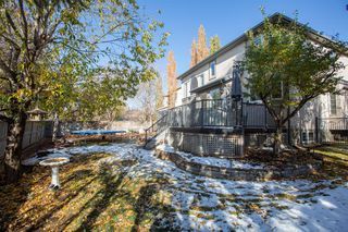 Photo 40: 52 Cranleigh Court SE in Calgary: Cranston Detached for sale : MLS®# A1042529
