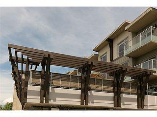 """Photo 17: 208 6011 NO 1 Road in Richmond: Terra Nova Condo for sale in """"Terra West Square"""" : MLS®# V1080371"""