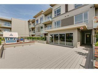 """Photo 14: 208 6011 NO 1 Road in Richmond: Terra Nova Condo for sale in """"Terra West Square"""" : MLS®# V1080371"""
