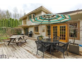 Photo 19: 26177 126th St. in Maple Ridge: Whispering Hills House for sale : MLS®# V1113864