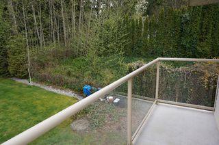Photo 30: 26177 126th St. in Maple Ridge: Whispering Hills House for sale : MLS®# V1113864