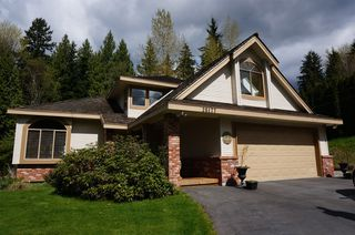 Photo 33: 26177 126th St. in Maple Ridge: Whispering Hills House for sale : MLS®# V1113864