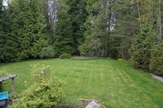 Photo 25: 26177 126th St. in Maple Ridge: Whispering Hills House for sale : MLS®# V1113864