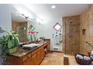 Photo 13: 26177 126th St. in Maple Ridge: Whispering Hills House for sale : MLS®# V1113864