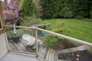 Photo 29: 26177 126th St. in Maple Ridge: Whispering Hills House for sale : MLS®# V1113864