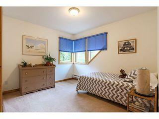 Photo 16: 26177 126th St. in Maple Ridge: Whispering Hills House for sale : MLS®# V1113864