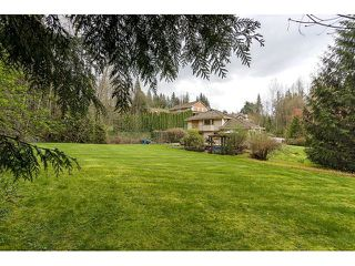 Photo 20: 26177 126th St. in Maple Ridge: Whispering Hills House for sale : MLS®# V1113864