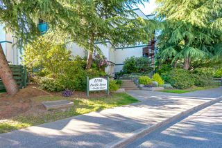 Main Photo: 316 1190 PACIFIC STREET in Coquitlam: North Coquitlam Condo for sale : MLS®# R2066979