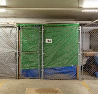 Photo 30: 303 9008 99 Avenue in Edmonton: Zone 13 Condo for sale : MLS®# E4202616