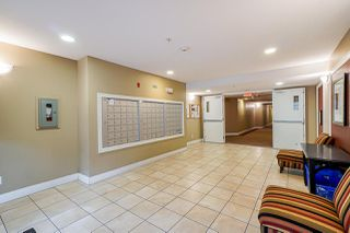 Photo 4: 322 30525 CARDINAL Avenue in Abbotsford: Abbotsford West Condo for sale : MLS®# R2503974
