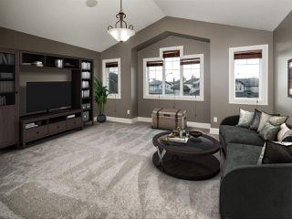 Photo 21: 4223 157 Avenue in Edmonton: Zone 03 House for sale : MLS®# E4218503