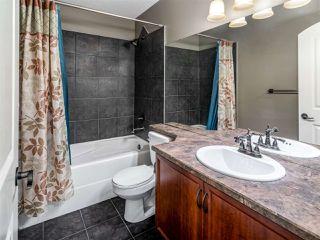 Photo 20: 4223 157 Avenue in Edmonton: Zone 03 House for sale : MLS®# E4218503