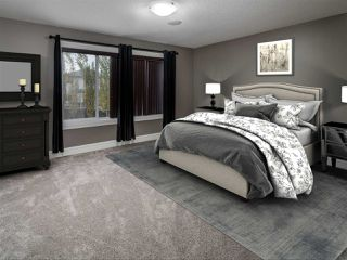 Photo 13: 4223 157 Avenue in Edmonton: Zone 03 House for sale : MLS®# E4218503