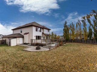 Photo 28: 4223 157 Avenue in Edmonton: Zone 03 House for sale : MLS®# E4218503