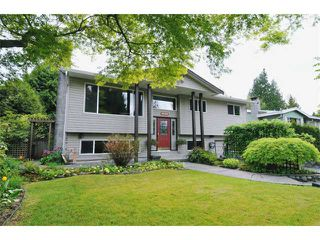 "Photo 1: 21148 119TH Avenue in Maple Ridge: Southwest Maple Ridge House for sale in ""S"" : MLS®# V947669"