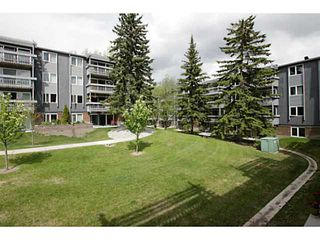 Photo 16: 205 816 89 Avenue SW in CALGARY: Haysboro Condo for sale (Calgary)  : MLS®# C3632405