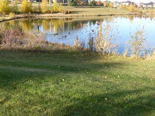 Photo 50: 204 4042 MACTAGGART Drive in Edmonton: Zone 14 Condo for sale : MLS®# E4192200