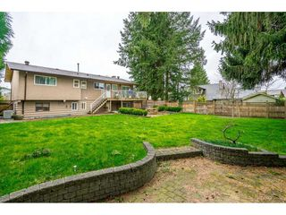 Photo 3: 19309 117B Avenue in Pitt Meadows: South Meadows House for sale : MLS®# R2449517