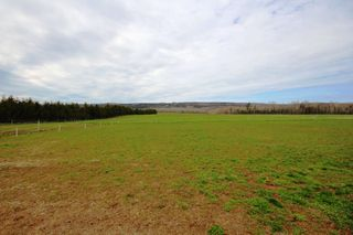 Photo 18: 2415 BROOKLYN Street in Aylesford: 404-Kings County Farm for sale (Annapolis Valley)  : MLS®# 202008026
