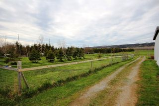Photo 20: 2415 BROOKLYN Street in Aylesford: 404-Kings County Farm for sale (Annapolis Valley)  : MLS®# 202008026