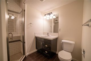 Photo 27: 3807 14 Street SW in Calgary: Altadore Detached for sale : MLS®# C4297021