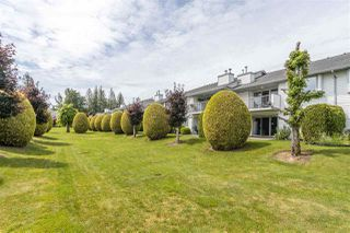 "Photo 39: 53 33922 KING Road in Abbotsford: Poplar Townhouse for sale in ""Kingsview Estates"" : MLS®# R2467822"