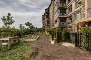 """Photo 34: 105 8157 207 Street in Langley: Willoughby Heights Condo for sale in """"YORKSON CREEK PARKSIDE 2"""" : MLS®# R2474244"""