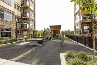 """Photo 36: 105 8157 207 Street in Langley: Willoughby Heights Condo for sale in """"YORKSON CREEK PARKSIDE 2"""" : MLS®# R2474244"""