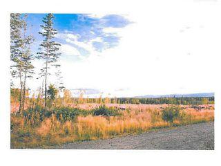 """Photo 3: LOT 4 BELL Place in Mackenzie: Mackenzie -Town Land for sale in """"BELL PLACE"""" (Mackenzie (Zone 69))  : MLS®# N227296"""