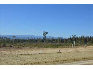 """Photo 16: LOT 4 BELL Place in Mackenzie: Mackenzie -Town Land for sale in """"BELL PLACE"""" (Mackenzie (Zone 69))  : MLS®# N227296"""
