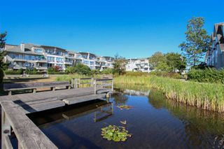 Photo 19: 126 5800 ANDREWS ROAD in Richmond: Steveston South Condo for sale : MLS®# R2099105