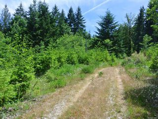 Photo 3: LT 6 Murray Ave in UNION BAY: CV Union Bay/Fanny Bay Land for sale (Comox Valley)  : MLS®# 833548