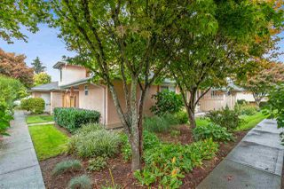 """Photo 1: 5 19044 118B Avenue in Pitt Meadows: Central Meadows Townhouse for sale in """"Pioneer Meadows"""" : MLS®# R2507286"""