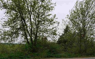 Photo 2: Lot 2 Main Street E in Stewiacke: 104-Truro/Bible Hill/Brookfield Vacant Land for sale (Northern Region)  : MLS®# 202022723