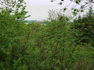 Photo 1: Lot 2 Main Street E in Stewiacke: 104-Truro/Bible Hill/Brookfield Vacant Land for sale (Northern Region)  : MLS®# 202022723