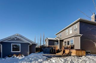 Photo 46: 68 Prestwick Estate Way SE in Calgary: McKenzie Towne Detached for sale : MLS®# A1057649