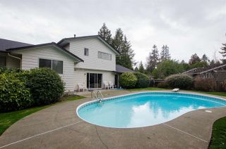 Photo 15: 4989 6 AVENUE in Delta: Tsawwassen Central House for sale (Tsawwassen)  : MLS®# R2235874