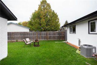 Photo 19: 42 Gosford Avenue in Winnipeg: Meadowood Residential for sale (2E)  : MLS®# 1926759
