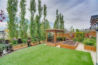 Photo 36: 267 KINGSBRIDGE RD SE: Airdrie House for sale : MLS®# C4268525