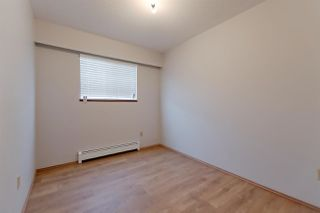 Photo 16: 2036 E 52 AVENUE in Vancouver: Killarney VE House for sale (Vancouver East)  : MLS®# R2296626