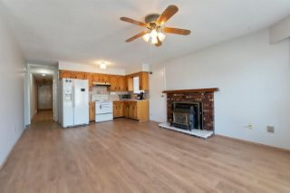Photo 15: 2036 E 52 AVENUE in Vancouver: Killarney VE House for sale (Vancouver East)  : MLS®# R2296626