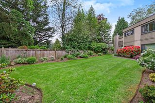 "Photo 19: 1213 PLATEAU Drive in North Vancouver: Pemberton Heights Townhouse for sale in ""Plateau Village"" : MLS®# R2455455"