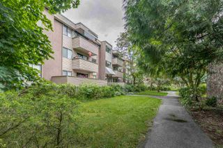 "Main Photo: 1 2432 WILSON Avenue in Port Coquitlam: Central Pt Coquitlam Condo for sale in ""ORCHARD VALLEY ESTAT3ES"" : MLS®# R2464176"