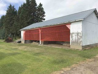 Photo 46: 26121 Twp Rd 562: Rural Sturgeon County House for sale : MLS®# E4210423