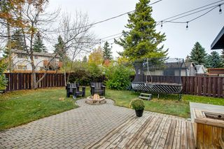 Photo 45: 315 Queen Charlotte Place SE in Calgary: Queensland Detached for sale : MLS®# A1042205