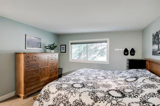 Photo 22: 315 Queen Charlotte Place SE in Calgary: Queensland Detached for sale : MLS®# A1042205