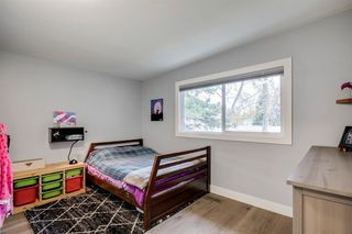 Photo 25: 315 Queen Charlotte Place SE in Calgary: Queensland Detached for sale : MLS®# A1042205