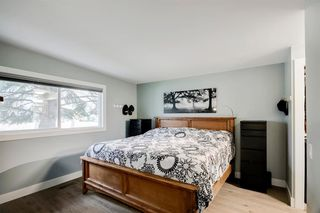 Photo 20: 315 Queen Charlotte Place SE in Calgary: Queensland Detached for sale : MLS®# A1042205