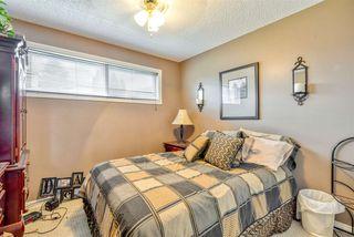 Photo 13: 300 WARWICK Crescent in Edmonton: Zone 27 House for sale : MLS®# E4173938