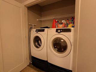 Photo 16: 21 21 Augustine Crescent: Sherwood Park House Half Duplex for sale : MLS®# E4184115